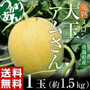 青森県産 つがりあんメロン 大玉 アムさん 秀品 1玉 約1.5kg 送料無料 常温 産地直送|tsukiji-ichiba2