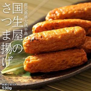 お中元 ギフト さつまあげ 鹿児島県 大隅半島 国生屋のさつまあげ お試しセット 内容量 530g 冷蔵 産地直送 送料無料 同梱不可|tsukiji-ichiba2