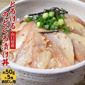 刺身 のどぐろ 丼もの 山口県産 とろけるのどぐろ漬け丼 お試し5食セット 50g×5食 冷凍同梱可能|tsukiji-ichiba2