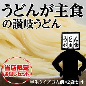 麺 うどん 饂飩 うどんが主食 讃岐うどん 半生タイプ 300g(3人前)×2袋 常温 送料無料 ネコポス 同梱不可|tsukiji-ichiba2