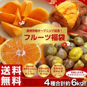 送料無料!豊洲開場記念「フルーツ福袋 合計約6kg」みかん・種なし柿・安納紅芋・おまけの甘栗 tsukiji-ichiba2