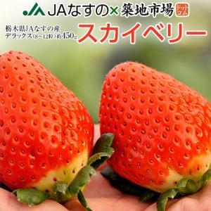 いちご 栃木県産 「スカイベリー」 1箱 DX(デラックス)約450g(8〜12粒) ※冷蔵|tsukiji-ichiba2