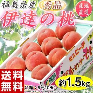 もも モモ 桃 ギフト 伊達の桃 秀品 福島県産 送料無料 約1.5kg(5〜10玉)|tsukiji-ichiba2