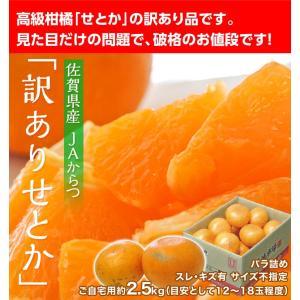 みかん 柑橘 佐賀県産 訳あり せとか 約2.5kg(訳あり品 スレ・傷あり) 送料無料|tsukiji-ichiba2|02
