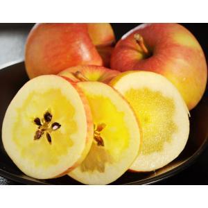 こみつ りんご リンゴ 究極の蜜入りりんご 青森県産 こみつ 6〜12玉 約2キロ ※4箱まで同一配送先に限り送料1口 tsukiji-ichiba2 18