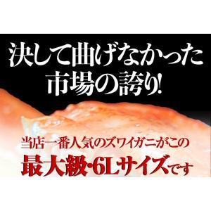 カニ かに ずわい 蟹 ロシア産 ボイルズワイガニ 6L 4肩 計2kg 大盛り 食べ放題 冷凍 送料無料 ギフト tsukiji-ichiba2 02