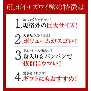 カニ かに ずわい 蟹 ロシア産 ボイルズワイガニ 6L 4肩 計2kg 大盛り 食べ放題 冷凍 送料無料 ギフト tsukiji-ichiba2 11