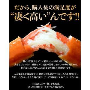 カニ かに ずわい 蟹 ロシア産 ボイルズワイガニ 6L 4肩 計2kg 大盛り 食べ放題 冷凍 送料無料 ギフト tsukiji-ichiba2 12