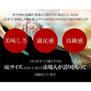 カニ かに ずわい 蟹 ロシア産 ボイルズワイガニ 6L 4肩 計2kg 大盛り 食べ放題 冷凍 送料無料 ギフト tsukiji-ichiba2 03