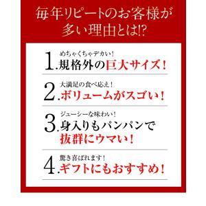 カニ かに ずわい 蟹 ロシア産 ボイルズワイガニ 6L 4肩 計2kg 大盛り 食べ放題 冷凍 送料無料 ギフト tsukiji-ichiba2 04