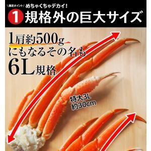 カニ かに ずわい 蟹 ロシア産 ボイルズワイガニ 6L 4肩 計2kg 大盛り 食べ放題 冷凍 送料無料 ギフト tsukiji-ichiba2 05
