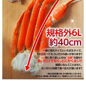 カニ かに ずわい 蟹 ロシア産 ボイルズワイガニ 6L 4肩 計2kg 大盛り 食べ放題 冷凍 送料無料 ギフト tsukiji-ichiba2 06