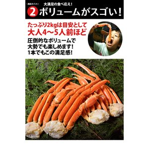 カニ かに ずわい 蟹 ロシア産 ボイルズワイガニ 6L 4肩 計2kg 大盛り 食べ放題 冷凍 送料無料 ギフト tsukiji-ichiba2 07