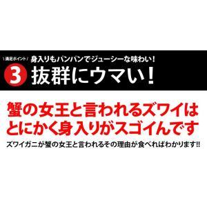 カニ かに ずわい 蟹 ロシア産 ボイルズワイガニ 6L 4肩 計2kg 大盛り 食べ放題 冷凍 送料無料 ギフト tsukiji-ichiba2 08