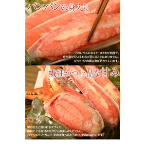 カニ かに ずわい 蟹 ロシア産 ボイルズワイガニ 6L 4肩 計2kg 大盛り 食べ放題 冷凍 送料無料 ギフト tsukiji-ichiba2 09