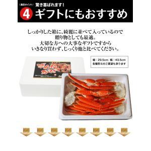 カニ かに ずわい 蟹 ロシア産 ボイルズワイガニ 6L 4肩 計2kg 大盛り 食べ放題 冷凍 送料無料 ギフト tsukiji-ichiba2 10