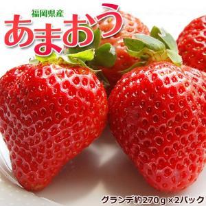福岡県産 あまおういちご G(グランデ) 約270g×2パック ※冷蔵|tsukiji-ichiba2