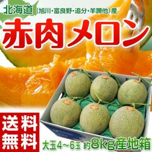 《送料無料》北海道産「赤肉メロン」訳あり産地箱 4〜6玉 約...