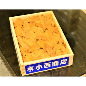 お取り寄せ うに ウニ 雲丹 キタムラサキウニ 弁当箱 バラ・B品 約250g 北海道・青森 冷蔵 豊洲市場直送 同梱不可 送料無料|tsukiji-ichiba2