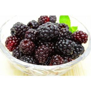 ブラックベリー 冷凍ブラックベリー 2kg 500g×4パック 冷凍フルーツ ヨナナス|tsukiji-ousama