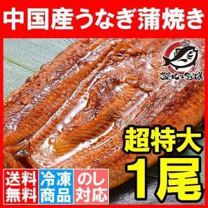 超特大 うなぎ 蒲焼き 平均330g前後×1尾 タレ付き (中国産 うなぎ ウナギ 鰻)|tsukiji-ousama