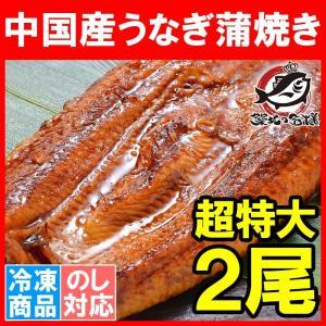 超特大 うなぎ 蒲焼き 平均330g前後×2尾 タレ付き (中国産 うなぎ ウナギ 鰻)|tsukiji-ousama