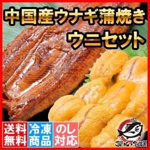うにうなぎセット <梅> 超特大!うなぎ蒲焼き 平均330g前後×2尾 生ウニ 100g タレ付き 柔らかうなぎと生ウニの贅沢セット|tsukiji-ousama