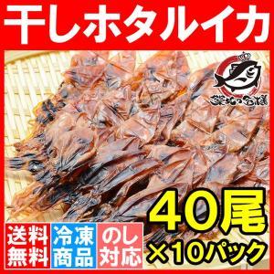 ホタルイカ 素干し 干しほたるいか<40尾×10パック> tsukiji-ousama