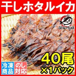 ホタルイカ 素干し 干しほたるいか<40尾×1パック> tsukiji-ousama