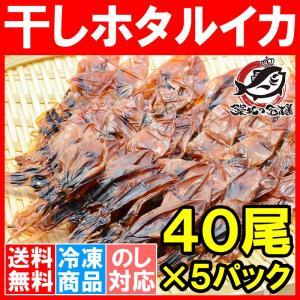 ホタルイカ 素干し 干しほたるいか<40尾×5パック> tsukiji-ousama