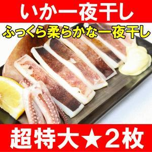 絶品の真いか一夜干し(2枚入 1袋)(いか イカ 烏賊)|tsukiji-ousama