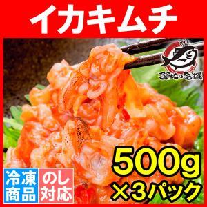 イカキムチ いかキムチ 1.5kg 500g×3パック たっぷり業務用の新鮮イカキムチ tsukiji-ousama