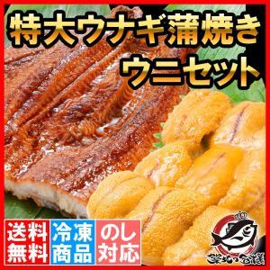 うにうなぎセット <松> 超特大国産うなぎ蒲焼き 平均250g前後×2尾 生ウニ 100g タレ付き|tsukiji-ousama