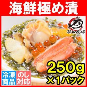 海鮮極め漬(250g×1・約2人前)|tsukiji-ousama