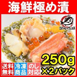 海鮮極め漬(500g・250g×2・約4人前)|tsukiji-ousama