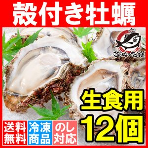 生牡蠣 殻付き 生食用カキ(12個入り 冷凍殻付き牡蠣 生食用)|tsukiji-ousama