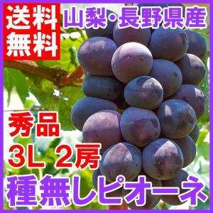 ピオーネ 山梨県勝沼産 種なし ピオーネ 1箱1.3kg前後 650g前後×2房 3L 最高級特秀 (ぶどう ブドウ 葡萄) tsukiji-ousama