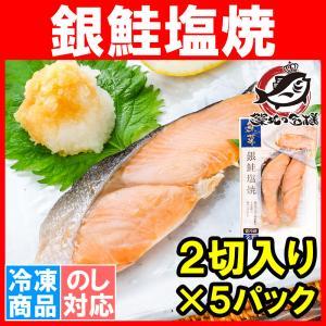 銀鮭 塩焼 2切れ×5パック 鮭の塩焼 サケ 鮭 しゃけ  サーモン 塩焼き 焼き魚 切り身 魚菜 ファストフィッシュ レトルトパック|tsukiji-ousama