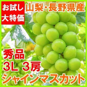 シャインマスカット 山梨県勝沼産 種なし シャインマスカット 1箱 2.1kg前後 700g前後 ×3房 3L サイズ 最高級特秀ランク (ぶどう ブドウ 葡萄) tsukiji-ousama