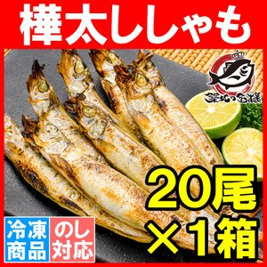 子持ちからふとししゃも20尾(大サイズ樺太シシャモ)|tsukiji-ousama