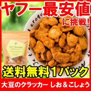 大豆のクラッカー ソイクラッカー しお&こしょう 60g ×1パック|tsukiji-ousama