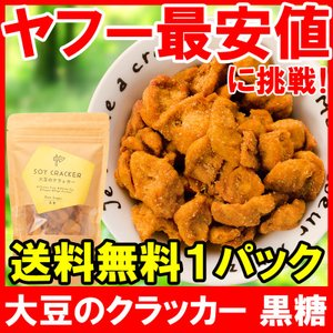 大豆のクラッカー ソイクラッカー 黒糖 60g ×1パック|tsukiji-ousama