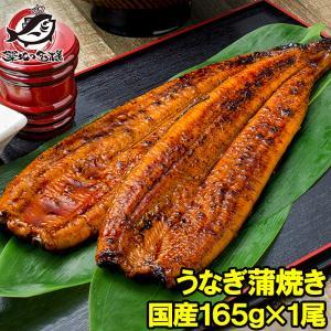 国産うなぎ蒲焼き 大サイズ 平均165g前後×1尾|tsukiji-ousama
