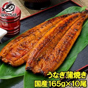 国産うなぎ蒲焼き 大サイズ 平均165g前後×10尾|tsukiji-ousama
