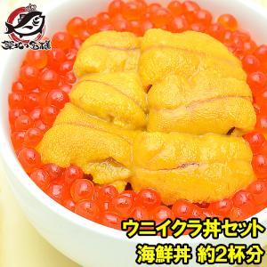 築地市場のウニイクラ丼セット(2杯分・無添加生ウニ100g&...