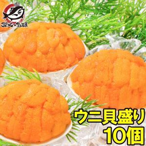 (ウニ うに 雲丹)うに貝盛り40g(10個)|tsukiji-ousama