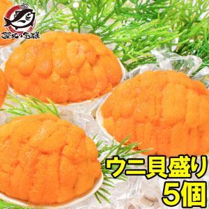 (ウニ うに 雲丹)うに貝盛り40g(5個)|tsukiji-ousama