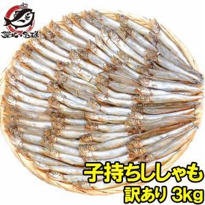訳ありししゃも(3kg・1kg×3袋業務用子持ちシシャモ)ししゃも シシャモ|tsukiji-ousama