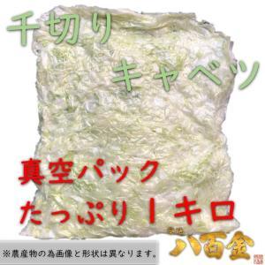 たっぷり1キロ 千切りキャベツ 真空パック カット野菜 カットキャベツ 時短に便利
