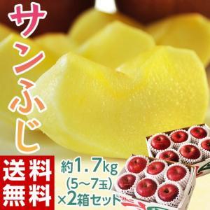 送料無料 りんご リンゴ 林檎 長野・安曇野産 『サンふじ』 2箱セット (1箱5〜7玉 約1.7キロ)|tsukijiichiba